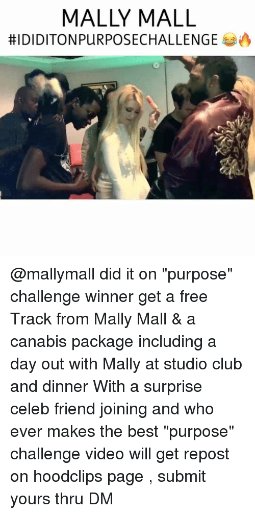 "Club, Funny, and Mally Mall: MALLY MALL  HIDIDITONPURPOSECHALLENGE A @mallymall did it on ""purpose"" challenge winner get a free Track from Mally Mall & a canabis package including a day out with Mally at studio club and dinner With a surprise celeb friend joining and who ever makes the best ""purpose"" challenge video will get repost on hoodclips page , submit yours thru DM"