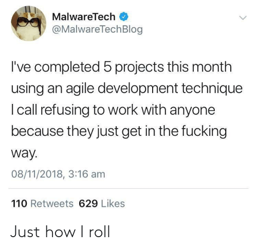 Calle: MalwareTech  @MalwareTechBlog  I've completed 5 projects this month  using an agile development technique  I call refusing to work with anyone  because they just get in the fucking  way.  08/11/2018, 3:16 am  110 Retweets 629 Likes Just how I roll