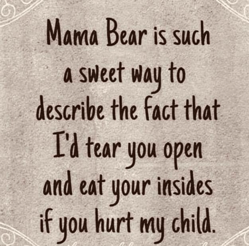 mama bear: Mama Bear is such  a Sweet way to  describe the fact that  I'l tear you open  and eat your insides  if  hurt my child.