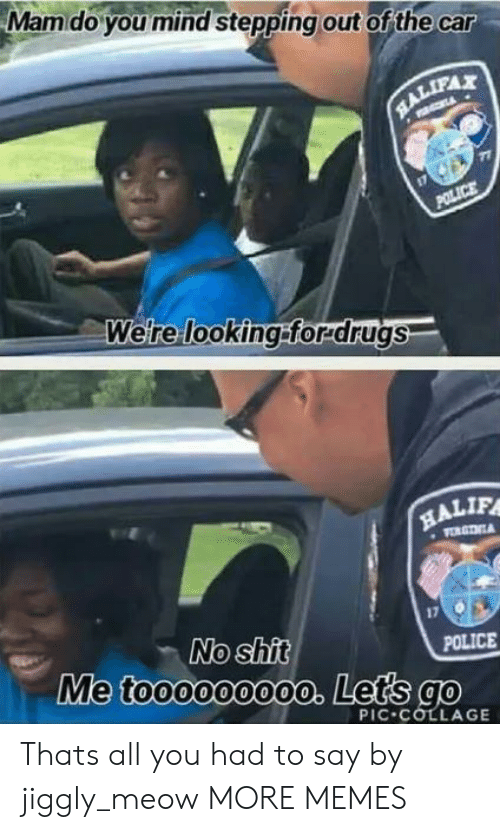 Stepping: Mamdo you mind stepping out of the car  RALIFAX  POLICE  Were looking:forrdrugs  HALIF  VORGTNA  No shit  Me toooooo00o. Lets go  POLICE  PIC COLLAGE Thats all you had to say by jiggly_meow MORE MEMES