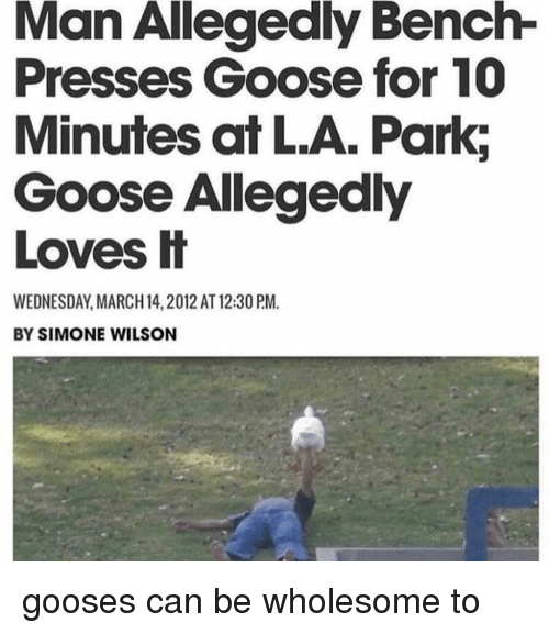 March 14: Man Allegedly Bench-  Presses Goose for 10  Minutes at L.A. Park;  Goose Allegedly  Loves H  WEDNESDAY, MARCH 14, 2012 AT 12:30 PM.  BY SIMONE WILSON gooses can be wholesome to
