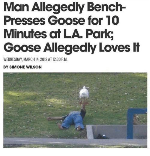 March 14: Man Allegedly Bench-  Presses Goose for 10  Minutes at LA. Park;  Goose Allegedly Loves H  WEDNESDAY, MARCH 14,2012 AT 12:30 P.M.  BY SIMONE WILSON