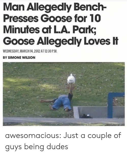 March 14: Man Allegedly Bench-  Presses Goose for 10  Minutes at LA. Park;  Goose Allegedly Loves忄  WEDNESDAY MARCH 14,2012 AT 12:30 P.M  BY SIMONE WILSON awesomacious:  Just a couple of guys being dudes
