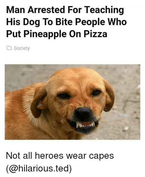 Funny, Pizza, and Ted: Man Arrested For Teaching  His Dog To Bite People Who  Put Pineapple On Pizza  Society Not all heroes wear capes (@hilarious.ted)
