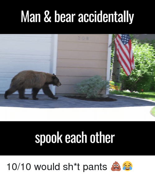 Spooked: Man & bear accidentally  spook each other 10/10 would sh*t pants 💩😂