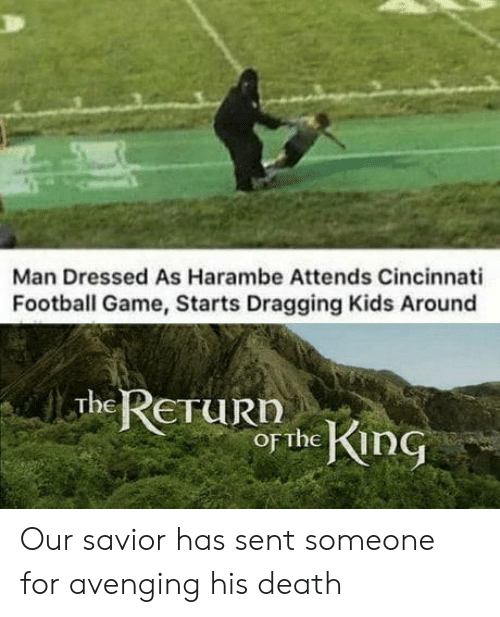 Harambe: Man Dressed As Harambe Attends Cincinnati  Football Game, Starts Dragging Kids Around  The RETURN  of the KinG Our savior has sent someone for avenging his death