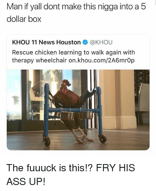 Ass, Memes, and News: Man  if  yal  dont  make  this  nigga  into  a  5  dollar bo;x  KHOU 11 News Houston @KHOU  Rescue chicken learning to walk again with  therapy wheelchair on.khou.com/2A6mrOp The fuuuck is this!? FRY HIS ASS UP!