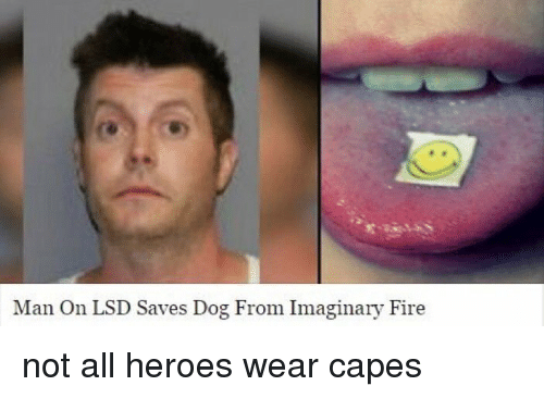 Man On Dog : Man on lsd saves dog from imaginary fire not all heroes
