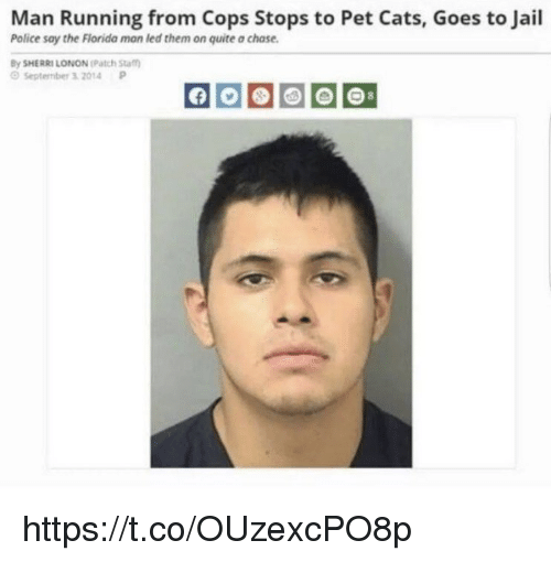 Cats, Jail, and Memes: Man Running from Cops Stops to Pet Cats, Goes to Jail  Police say the Fiorida man led them on quite a chase.  y SHERRI LONON (Patch Sta  OSeptember 3 2014P https://t.co/OUzexcPO8p