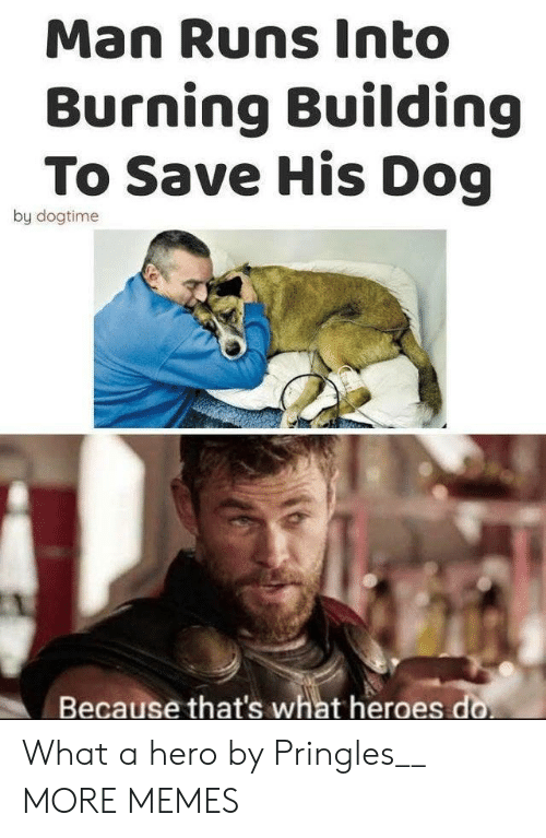 Pringles: Man Runs Into  Burning Building  To Save His Dog  by dogtime  Because that's what heroes do What a hero by Pringles__ MORE MEMES