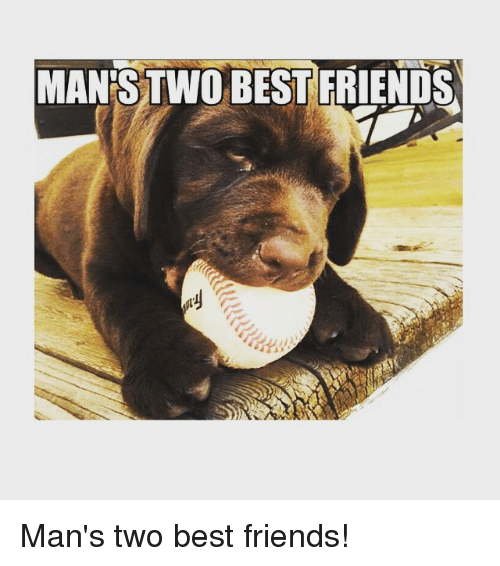 Best Friend, Friends, and Mlb: MAN STWO BEST FRIENDS Man's two best friends!