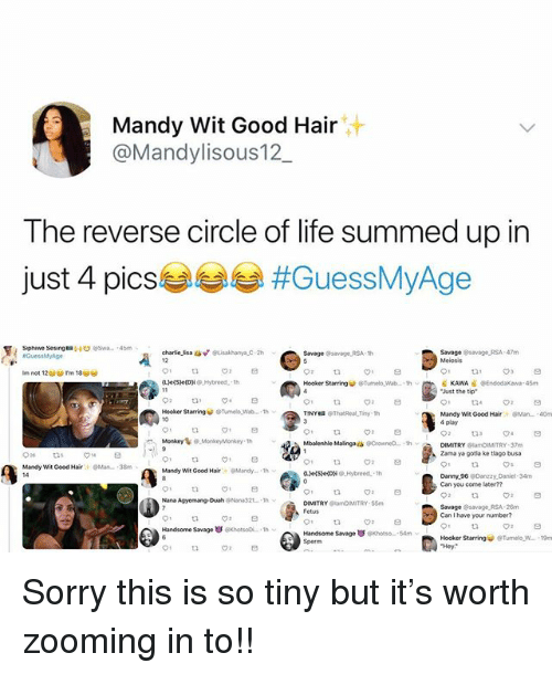 Hookers, Life, and Memes: Mandy Wit Good Hair  aMandylisous12  The reverse circle of life summed up in  just 4 pics!  #GuessMyAge  sphewe ses8ngt=  @swa..  ' 4bm  Savage savage RSA 47m  Meiosis  Savage savageRSA 1h  Hooker StarringTumelo Wab..thKAWA BEndodaKowa 45m  Just the tip  Hooker Starringu. @Tunelowe.. , th ︾  TINY  @ThatReal_Tiny. 1h  Mandy Wit Good HairMan..40m  4 play  Mbalenhle Malingaes CrowneD.-h  DIMITRY BlamDIMITRY-37m  Zama ya gotia ke tlago busa  Mandy Wit Good HairMan  38m  Mandy Wit Good Hair  9Mandy.. . 1h  ·  Can you come laterm  55m  SavagesavageRSA-20m  Can I have your mumber?  Handsome Savage孅GKhotsOi--1tw  Handsome Savage ㆆ。Khotsa  54m  Hooker StarringTumelo W... 19m Sorry this is so tiny but it's worth zooming in to!!