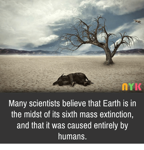 the sixth mass extinction caused by humans 6 things to know about earth's 6th mass extinction at least five similar die-offs have happened before, but this is the first in human history — and the first with human help russell mclendon.