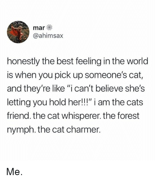 """Cats, Memes, and Best: mar  @ahimsax  honestly the best feeling in the world  is when you pick up someone's cat,  and they're like """"i can't believe she's  letting you hold her!!!"""" i am the cats  friend. the cat whisperer. the forest  nymph. the cat charmer. Me."""