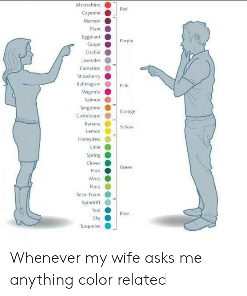 lime: Maraschino  Red  Cayenne  Maroon  Plum  Eggplant  Purple  Grape  Orchid  Lavender  Carnation  Strawberry  Bubblegum  Pink  Magenta  Salmon  Tangerine  Cantaloupe  Orange  Banana  Yellow  Lemon  Honeydew  Lime  Spring  Clover  Green  Fern  Moss  Flora  Seam Foam  Spindrift  Teal  Blue  Sky  Turquolse Whenever my wife asks me anything color related