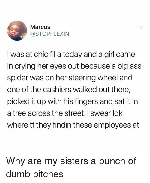 Ass, Crying, and Dumb: Marcus  @STOPFLEXIN  -IN  I was at chic fil a today and a girl came  in crying her eyes out because a big ass  spider was on her steering wheel and  one of the cashiers walked out there,  picked it up with his fingers and sat it in  a tree across the street. I swear ldk  where tf they findin these employees at Why are my sisters a bunch of dumb bitches