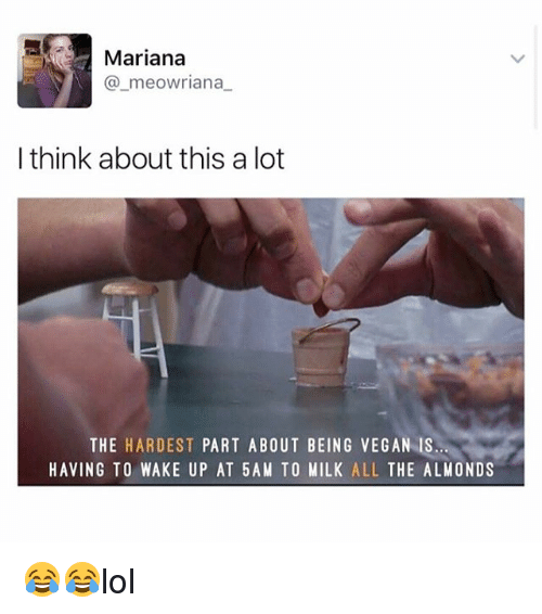 Memes, Vegan, and All The: Mariana  meowriana  I think about this a lot  THE HARDEST  PART ABOUT BEING VEGAN IS  HAVING TO WAKE UP AT 5AM TO MILK  ALL  THE ALMONDS 😂😂lol