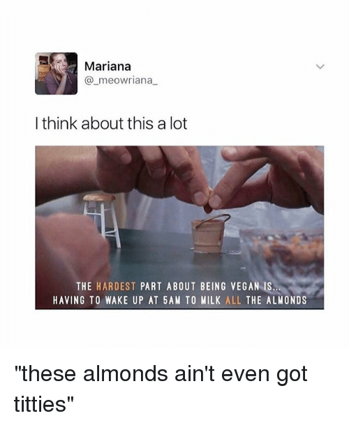 """5 Am, Titties, and Vegan: Mariana  meowriana  I think about this a lot  THE HARDEST  PART ABOUT BEING VEGAN IS  HAVING TO WAKE UP AT 5 AM TO MILK  ALL  THE ALMONDS """"these almonds ain't even got titties"""""""