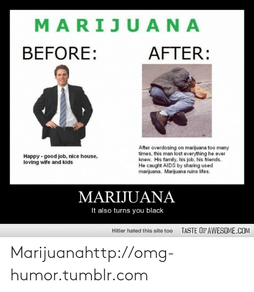 too many times: MARIJU ANA  BEFORE:  AFTER:  After overdosing on marijuana too many  times, this man lost everything he ever  knew. His family, his job, his friends.  He caught AIDS by sharing used  marijuana. Marijuana ruins lifes.  Happy - good job, nice house,  loving wife and kids  MARIJUANA  It also turns you black  TASTE OFAWESOME.COM  Hitler hated this site too Marijuanahttp://omg-humor.tumblr.com