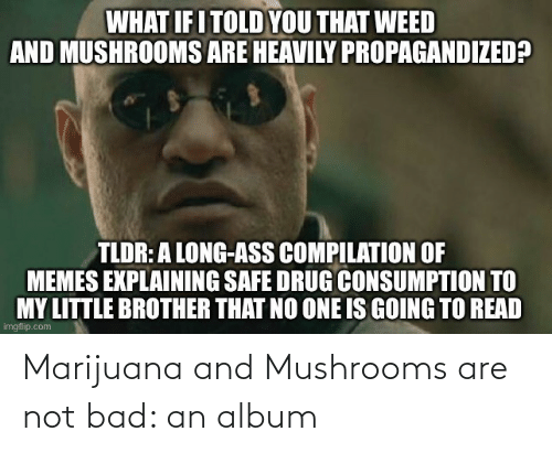 album: Marijuana and Mushrooms are not bad: an album