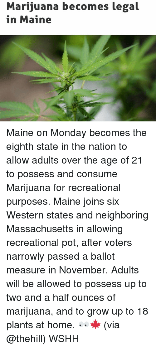 consumate: Marijuana becomes legal  in Maine Maine on Monday becomes the eighth state in the nation to allow adults over the age of 21 to possess and consume Marijuana for recreational purposes. Maine joins six Western states and neighboring Massachusetts in allowing recreational pot, after voters narrowly passed a ballot measure in November. Adults will be allowed to possess up to two and a half ounces of marijuana, and to grow up to 18 plants at home. 👀🍁 (via @thehill) WSHH
