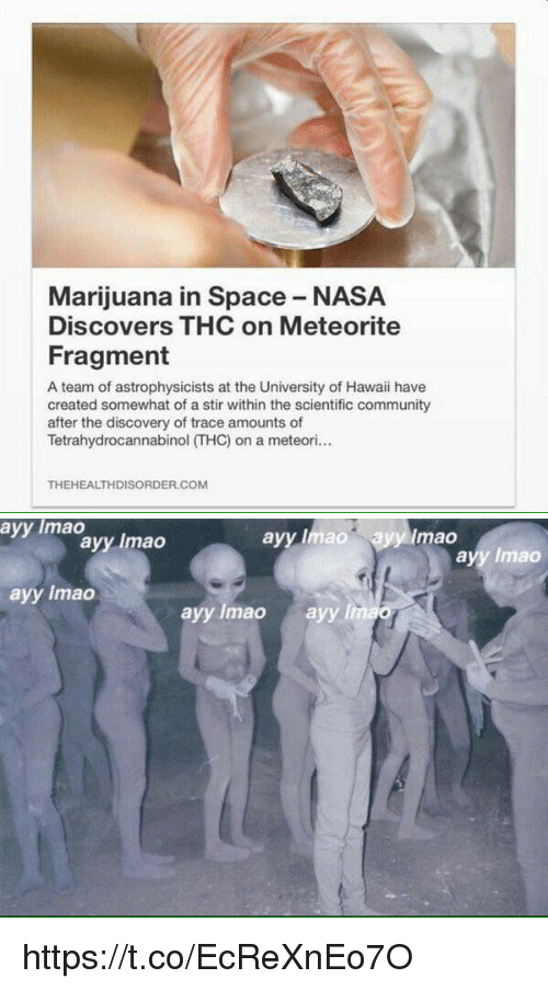 meteorite: Marijuana in Space NASA  Discovers THC on Meteorite  Fragment  A team of astrophysicists at the University of Hawaii have  created somewhat of a stir within the scientific community  after the discovery of trace amounts of  Tetrahydrocannabinol (THC) on a meteori...  THEHEALTHDISORDER.COM   ayy lmao  ayy Imao ayy mao  ayy Imao  ayy lmao  ayy lmao  ayy lmao  ayy lim https://t.co/EcReXnEo7O