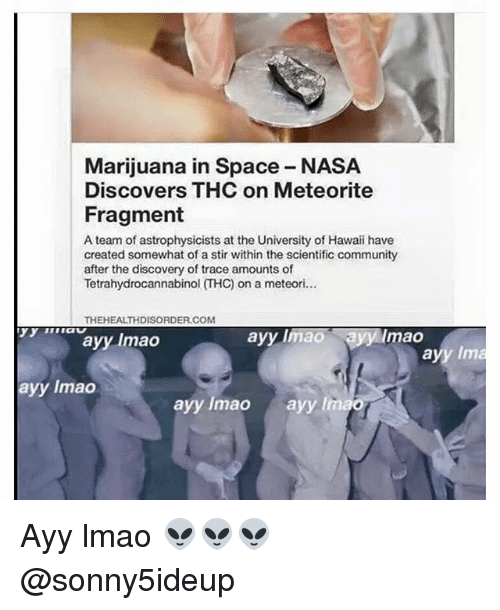Dank Memes: Marijuana in Space NASA  Discovers THC on Meteorite  Fragment  A team of astrophysicists at the University of Hawaii have  created somewhat of a stir within the scientific community  after the discovery of trace amounts of  THEHEALTHDISORDER.COM  ayyumao  ayy limao Ryfy mao  ayy Inn  ayy lmao  ayy lmao  ayy lmao Ayy lmao 👽👽👽 @sonny5ideup