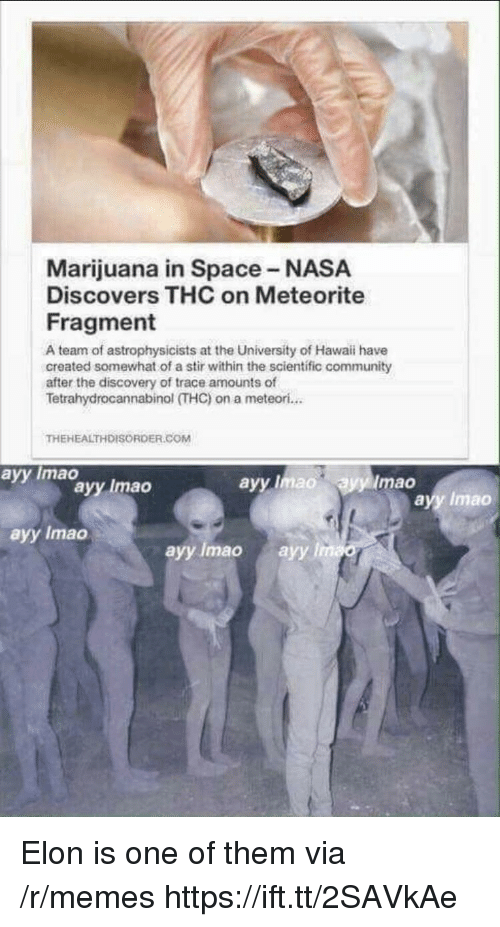 stir: Marijuana in Space NASA  Discovers THC on Meteorite  Fragment  A team of astrophysicists at the University of Hawaii have  created somewhat of a stir within the scientific community  after the discovery of trace amounts of  Tetrahydrocannabinol (THC)on a meteori...  THEHEALTHDISORDER.COM  avy Imao  avy lmad  Imao  ayy Imao  ayy Imao  ayy Imao  ayy Imao ayy l Elon is one of them via /r/memes https://ift.tt/2SAVkAe