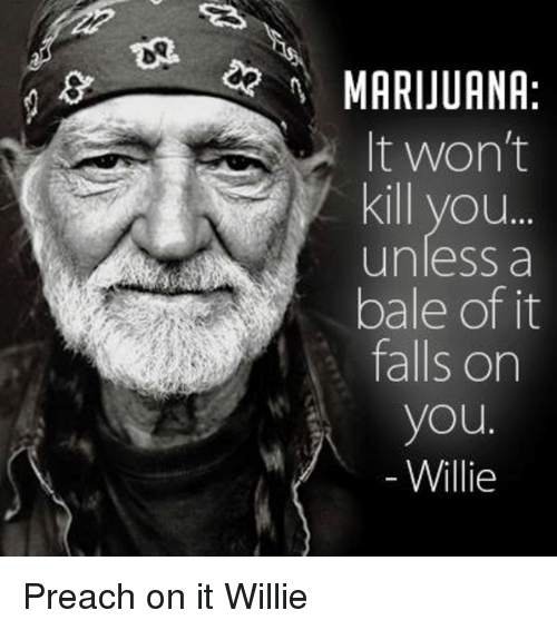 Its Fall: MARIJUANA  It won't  Kill you...  unless a  bale of it  falls on  you  Willie Preach on it Willie