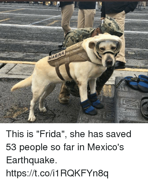 "Memes, Earthquake, and 🤖: MARINA This is ""Frida"", she has saved 53 people so far in Mexico's Earthquake. https://t.co/i1RQKFYn8q"