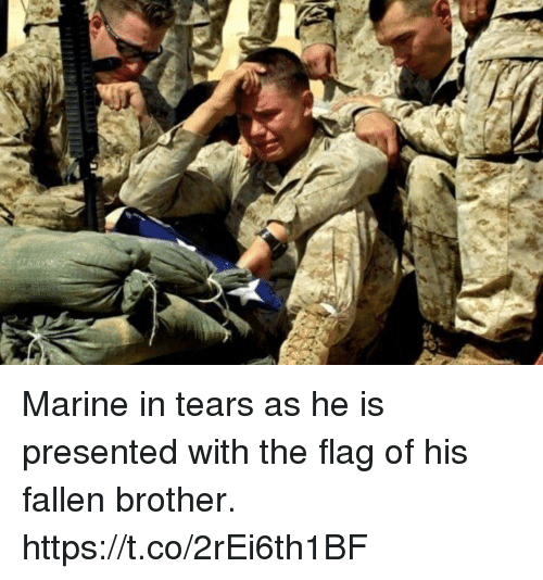 Memes, 🤖, and Brother: Marine in tears as he is presented with the flag of his fallen brother. https://t.co/2rEi6th1BF