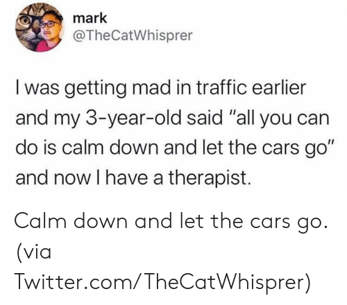 """the cars: mark  @TheCatWhisprer  I was getting mad in traffic earlier  and my 3-year-old said """"all you can  do is calm down and let the cars go""""  and now I have a therapist. Calm down and let the cars go.  (via Twitter.com/TheCatWhisprer)"""