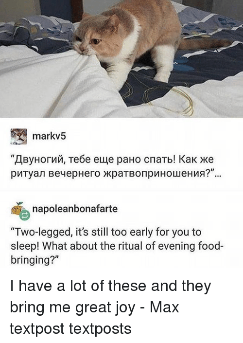 """bringed: markv5  napoleanbonafarte  """"Two-legged, it's still too early for you to  sleep! What about the ritual of evening food-  bringing?"""" I have a lot of these and they bring me great joy - Max textpost textposts"""