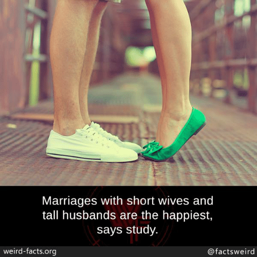 husbands: Marriages with short wives and  tall husbands are the happiest,  says study.  weird-facts.org  @factsweird