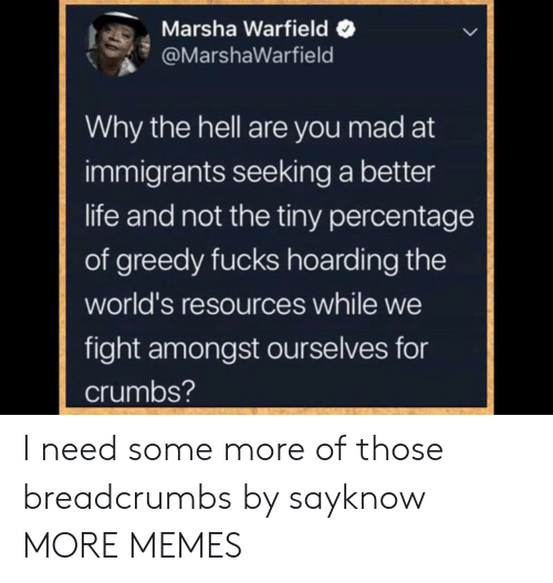 better life: Marsha Warfield  @MarshaWarfield  Why the hell are you mad at  immigrants seeking a better  life and not the tiny percentage  of greedy fucks hoarding the  world's resources while we  fight amongst ourselves for  crumbs? I need some more of those breadcrumbs by sayknow MORE MEMES