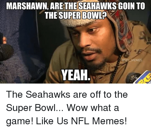 Meme, Memes, and Nfl: MARSHAWN, ARETHESEAHAWKS GOIN TO  THE SUPER BOWL?  LMEMES  YEAH The Seahawks are off to the Super Bowl... Wow what a game!  Like Us NFL Memes!