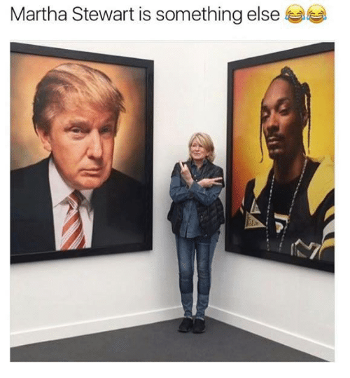 Memes, Martha Stewart, and Something Else: Martha Stewart is something else