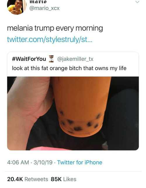 Melania Trump: marto  @mario_xcx  melania trump every morning  twitter.com/stylestruly/st...  #WaitForYou-@jakemiler_tx  look at this fat orange bitch that owns my life  4:06 AM- 3/10/19 Twitter for iPhone  20.4K Retweets 85K Likes
