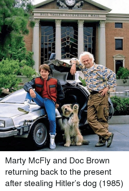 mcfly: Marty McFly and Doc Brown returning back to the present after stealing Hitler's dog (1985)