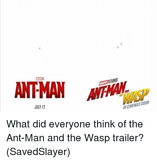the wasp: MARVEI STIDIDS  JULY 17  N CINEMAS SUON What did everyone think of the Ant-Man and the Wasp trailer?  (SavedSlayer)