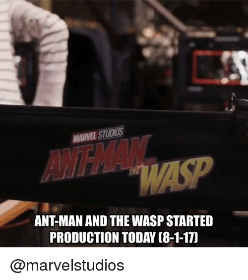 the wasp: MARVEL STUDIOS  ANT-MAN AND THE WASP STARTED  PRODUCTION TODAY (8-1-17) @marvelstudios