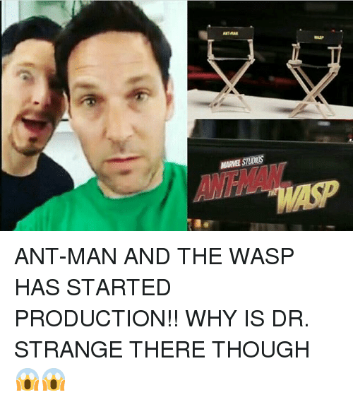 the wasp: MARVEL STUDIUS ANT-MAN AND THE WASP HAS STARTED PRODUCTION!! WHY IS DR. STRANGE THERE THOUGH 😱😱