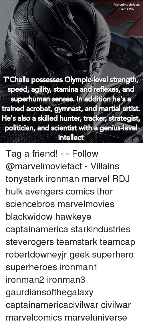 Memes, Gymnastics, and Martial: Marvelmoviefacts  Fact #196  T'Challa possesses Olympic level strength,  speed, agility, stamina and reflexes, and  superhuman senses. In addition he's a  trained acrobat, gymnast, and martial artist.  He's also a skilled hunter, tracker, strategist,  politician, and scientist with a genius-level  intellect Tag a friend! - - Follow @marvelmoviefact - Villains tonystark ironman marvel RDJ hulk avengers comics thor sciencebros marvelmovies blackwidow hawkeye captainamerica starkindustries steverogers teamstark teamcap robertdowneyjr geek superhero superheroes ironman1 ironman2 ironman3 gaurdiansofthegalaxy captainamericacivilwar civilwar marvelcomics marveluniverse