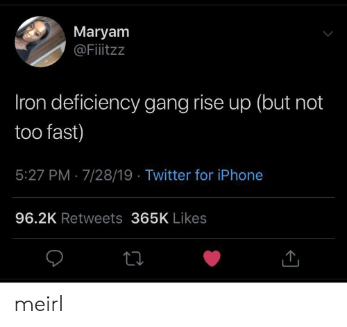 rise up: Maryam  @Fitzz  Iron deficiency gang rise up (but not  too fast)  5:27 PM 7/28/19 Twitter for iPhone  96.2K Retweets 365K Likes meirl