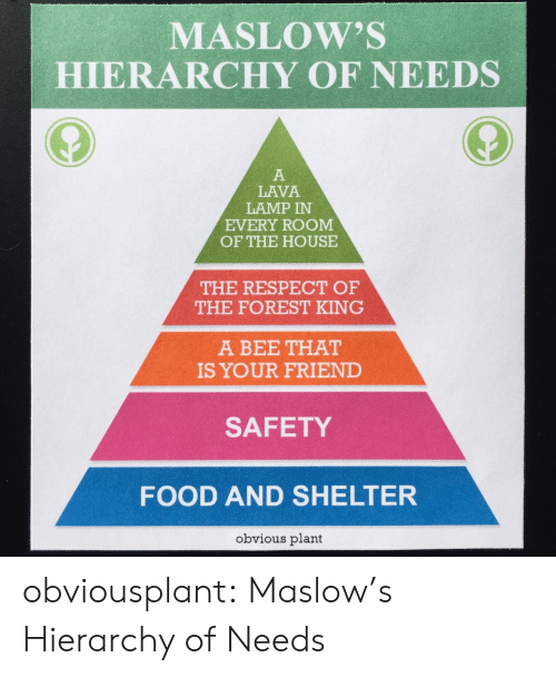 lava lamp: MASLOW'S  HIERARCHY OF NEEDS  LAVA  LAMP IN  EVERY ROOM  OF THE HOUSE  THE RESPECT OF  THE FOREST KING  A BEE THAT  IS YOUR FRIEND  SAFETY  FOOD AND SHELTER  obvious plant obviousplant:  Maslow's Hierarchy of Needs