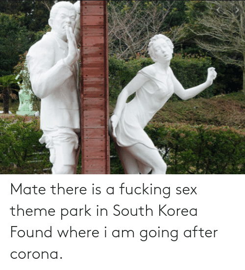 I Am: Mate there is a fucking sex theme park in South Korea Found where i am going after corona.