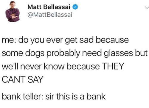 Becaus: Matt Bellassai  @MattBellassai  me: do you ever get sad because  some dogs probably need glasses but  well e THEY  CANT SAY  bank teller: sir this is a bank  never know becaus