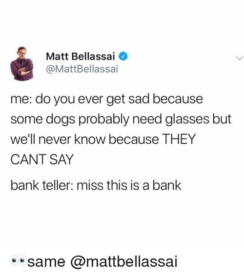 Need Glasses: Matt Bellassai  @MattBellassai  me: do you ever get sad because  some dogs probably need glasses but  we'll never know because THEY  CANT SAY  bank teller: miss this is a bank 👀same @mattbellassai