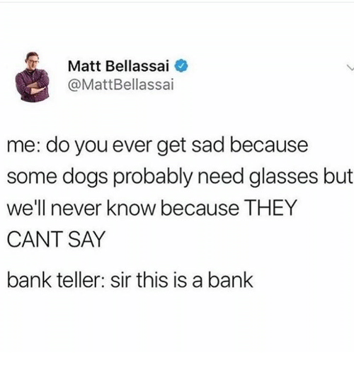 bank teller: Matt Bellassai  @MattBellassai  me: do you ever get sad because  some dogs probably need glasses but  we'll never know because THEY  CANT SAY  bank teller: sir this is a bank