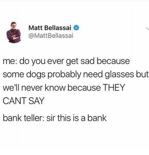 Need Glasses: Matt Bellassai  @MattBellassai  me: do you ever get sad because  some dogs probably need glasses but  we'll never know because THEY  CANT SAY  bank teller: sir this is a bank